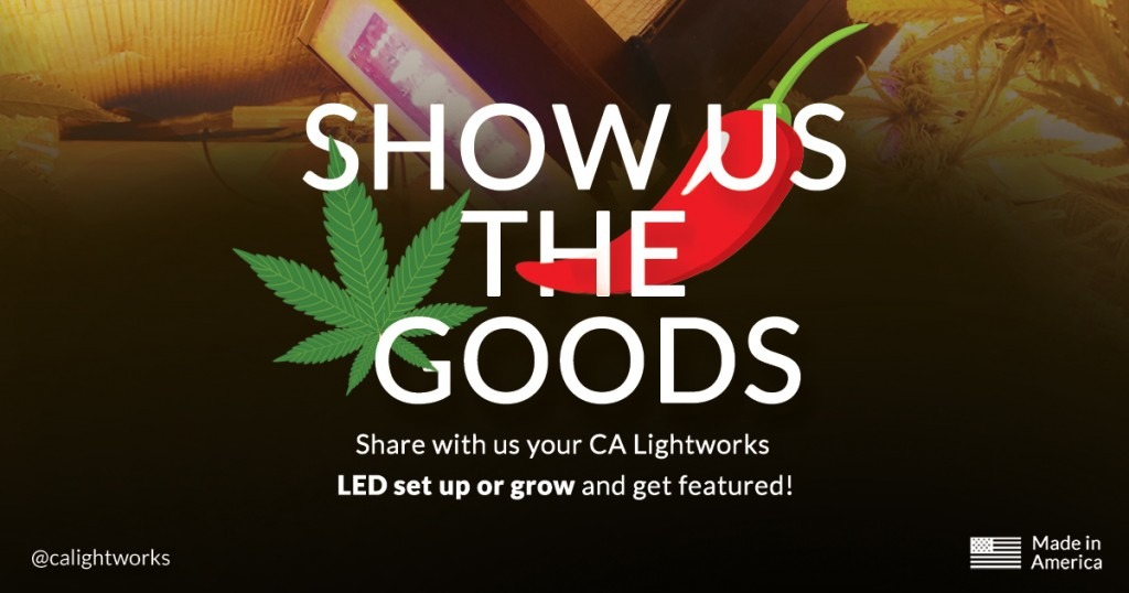 Banner: Show Us the Goods