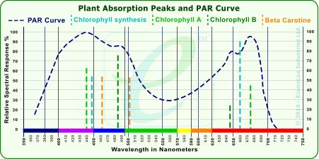 Plant absorption peaks and par curve chart