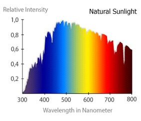Light Spectrum And Plant Growth