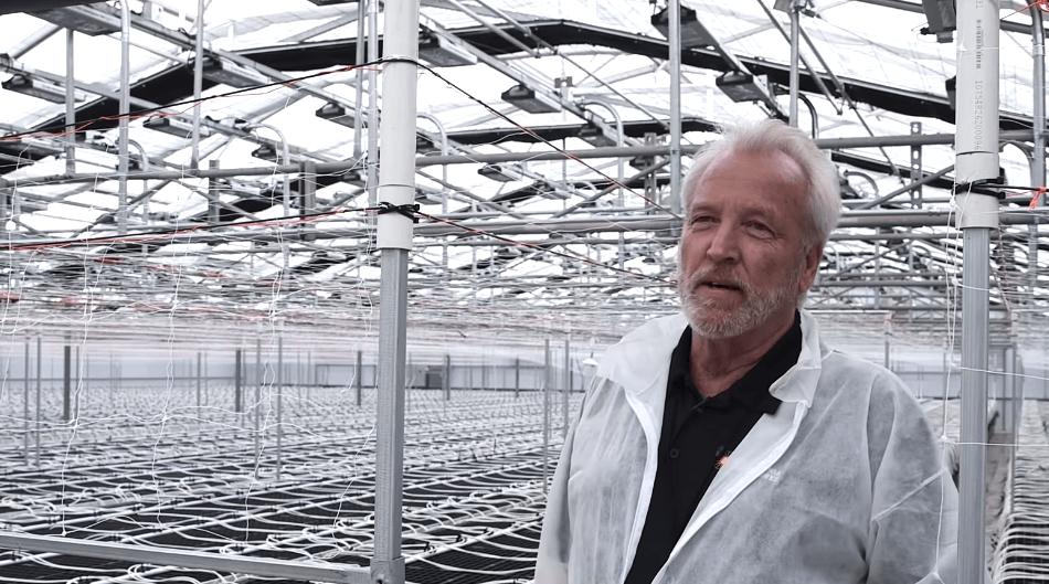 Harborside Farms LED Grow