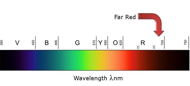 far red spectrum led grow light