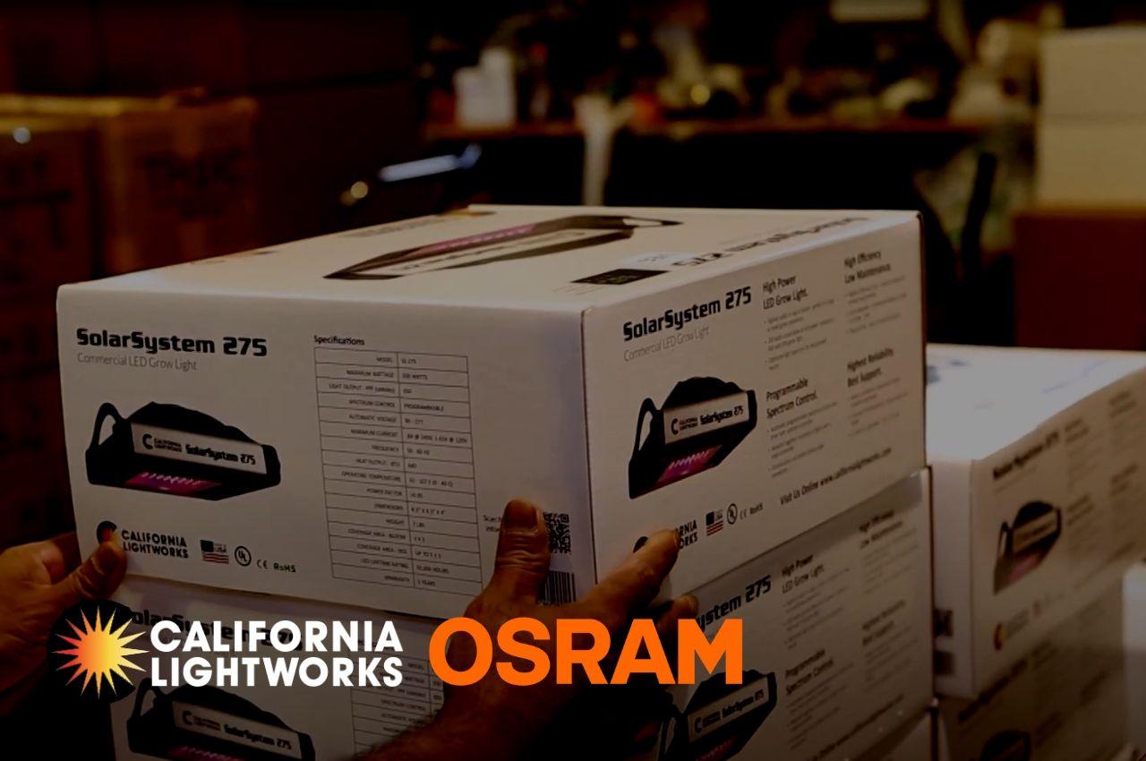 Osram LEDs