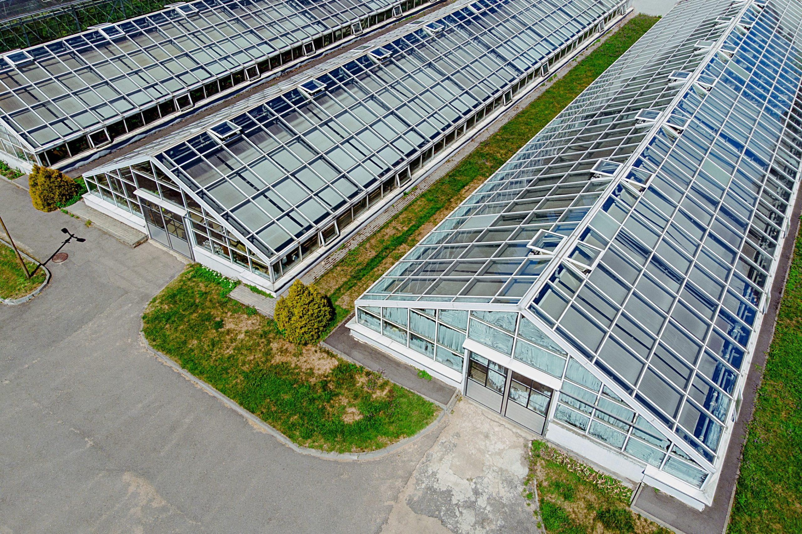Greenhouse Vs. Indoor Cultivation